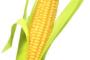 PVN piemērošana graudu piegādēm no 01.07.2016