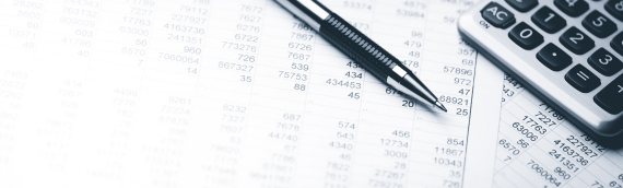 How much does accounting services cost in Latvia?